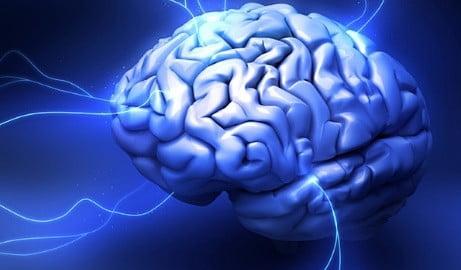 cerebro por qué funciona la psicoterapia